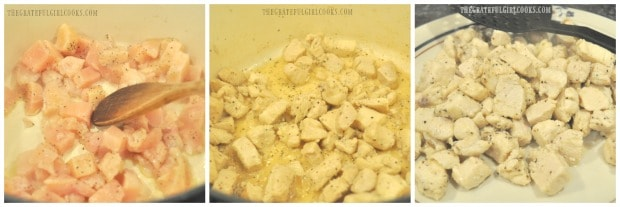 Cooking the chicken breast pieces for Southwestern chicken soup.