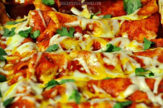Easy cheesy enchiladas, garnished with chopped cilantro for serving.