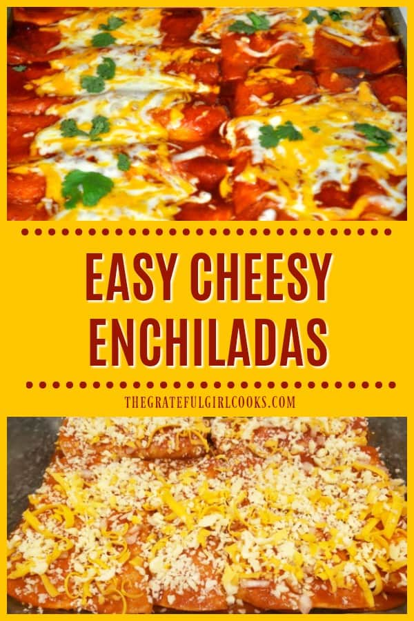 Make a yummy batch of Easy Cheesy Enchiladas in a flash, with cheddar and jack cheese, canned enchilada sauce, onions, and corn tortillas.