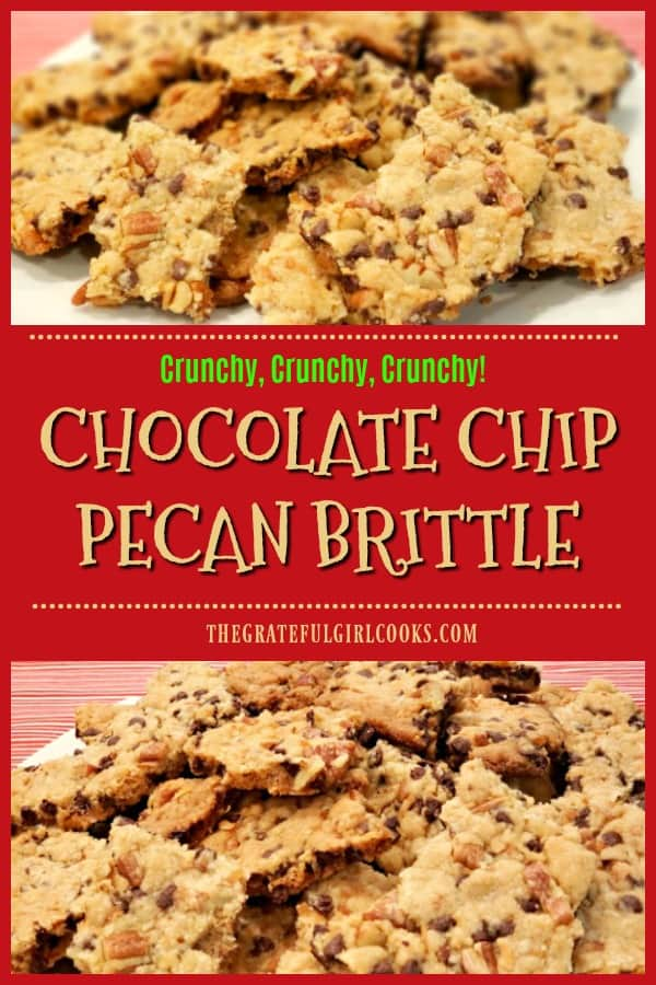 "Delicious Chocolate Chip Pecan Brittle is a very ""brittle"" slab of chocolate chip coconut pecan cookie broken in chunky pieces. EASY & YUMMY!"
